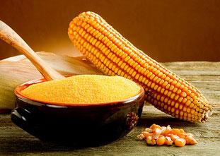 Maize flour (masa harina)