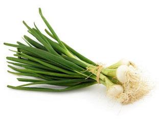 spring onion (scallion)