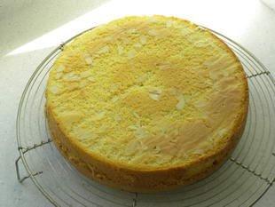 Génoise (Genoa sponge) : Photo of step #26