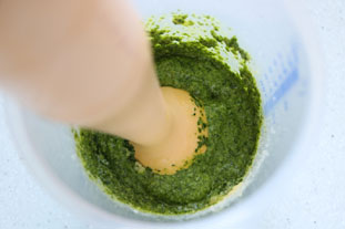 Coriander and cashew nut pesto : Photo of step #4