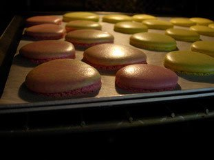 Macarons (the original French macaroons)  : Photo of step #16