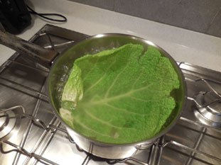 Stuffed cabbage leaves : Photo of step #4