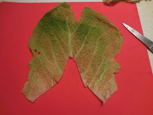 Stuffed cabbage leaves : Photo of step #7