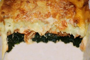 Salmon and Spinach Gratin