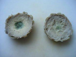 Artichoke hearts forestier  : Photo of step #2
