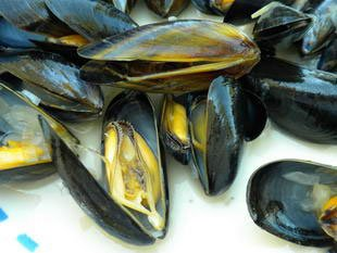 Mussels marinière : Photo of step #26