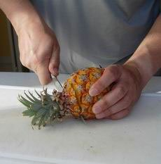 How to peel a pineapple : Photo of step #2