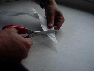 How to use a forcing bag (piping or icing bag)  : Photo of step #5