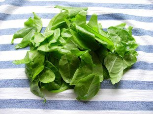 How to prepare sorrel