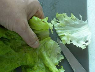 How to prepare a lettuce : Photo of step #4