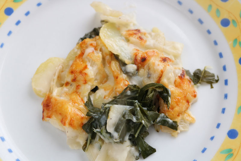 Chard and potato gratin